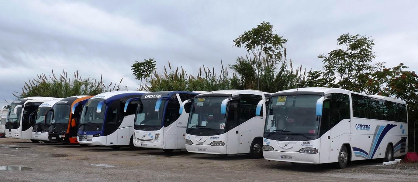 Servicios de autobús